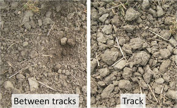 Effect of tracking on soils